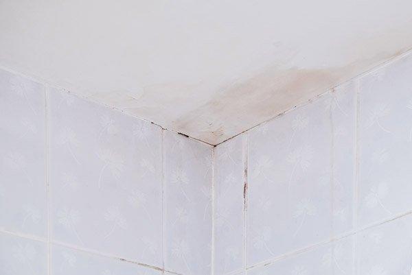 leaking shower repairs perth